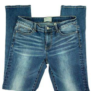 BKE Jeans Size 27 Payton Straight Leg Low Rise